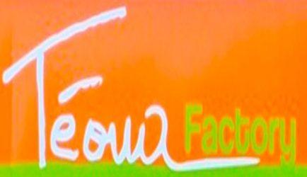 Téoua, l'artiste. Téoua Factory, une marque de fabrique.